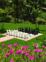the garden chess board